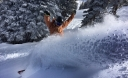 Arbor Shreddy Krueger Snowboard Review: It Rides like a Dream